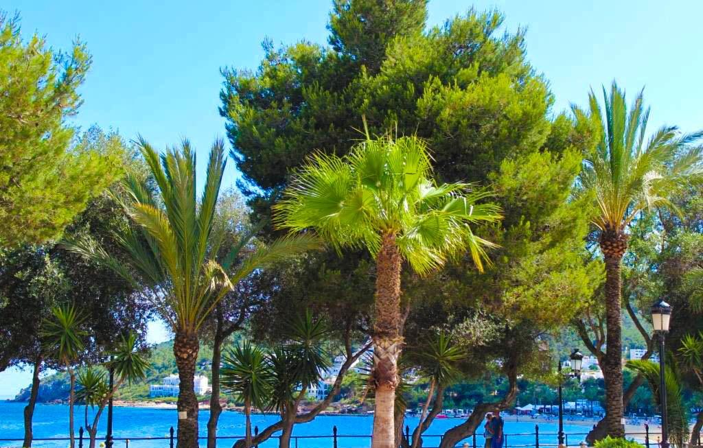 ibiza-rundreise-inselrundfahrt-santa-eularia-des-riu-del-Rio-strand-promenade-hafen-passeig-Maritim-beach-sehenswuerdigkeit-travel-tipp-blogger-blog-deutschland-2f